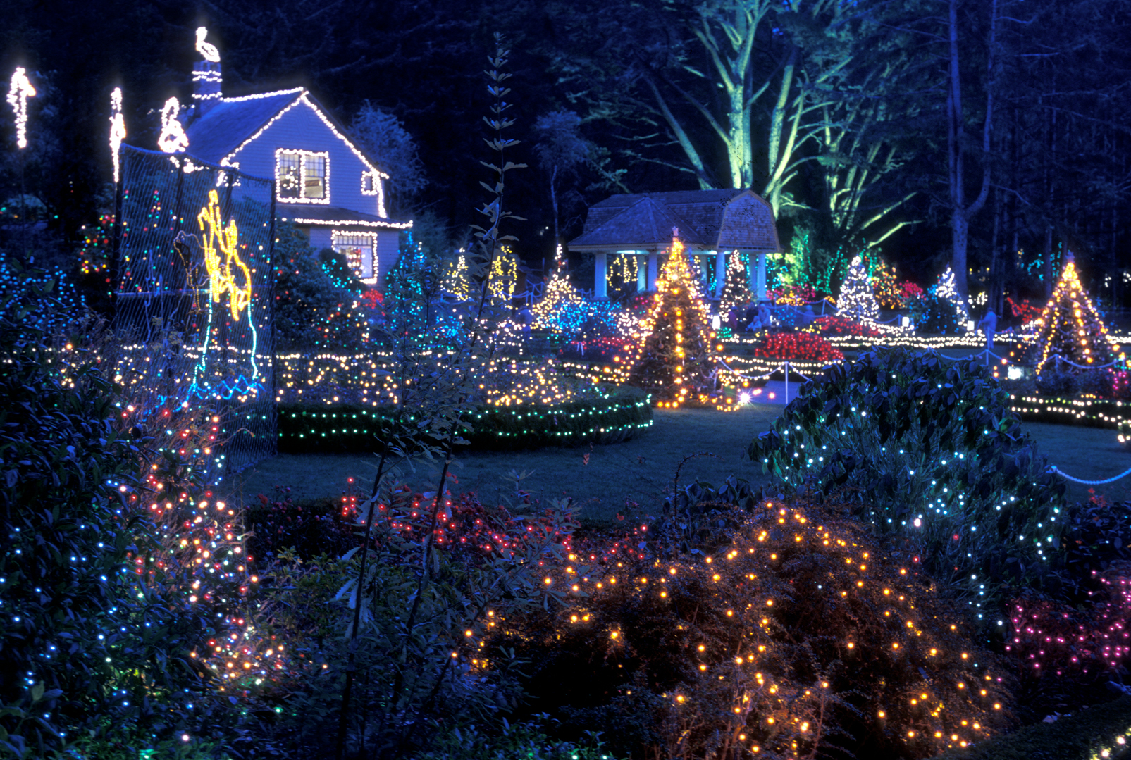 Holiday Lights at Shore Acres State Park – Southwest ...